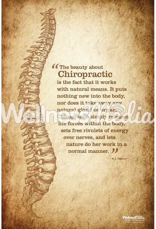 The Beauty of Chiropractic Poster