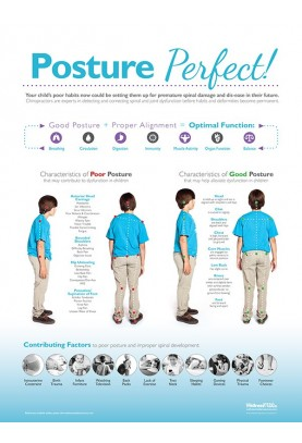Posture Perfect Chiropractic Poster
