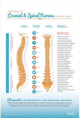 Function of Cranial and Spinal Nerves in Children...