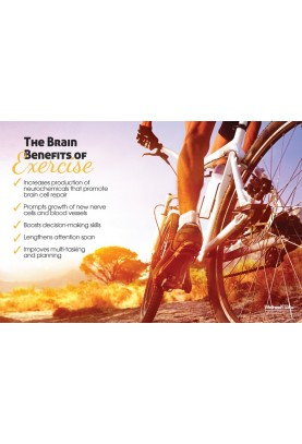 The Brain Benefits of Exercise Poster