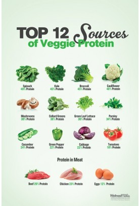Top 12 Sources of Veggie Protein Poster