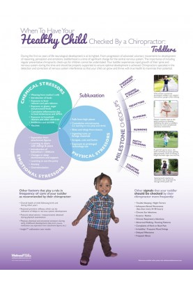 Healthy Child Check-Up Poster: Toddler