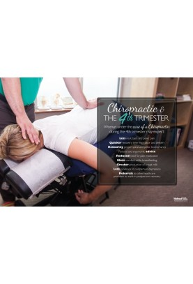 Chiropractic and the 4th Trimester Poster