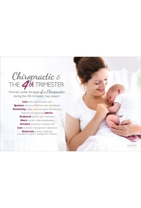 Chiropractic and the 4th Trimester Poster (2)