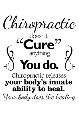"Chiropractic Doesn't Cure Anything Decal - 22"" x 29"""
