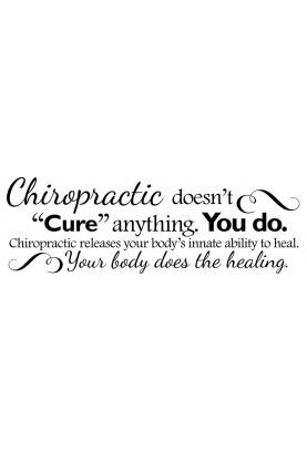"Chiropractic Doesn't Cure Anything Decal - 30"" x 10"""