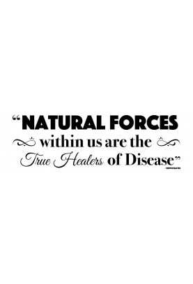"Natural Forces Decal - 30"" x 10"""