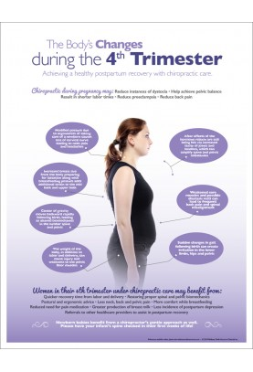 Changes During The 4th Trimester Chiropractic Handout