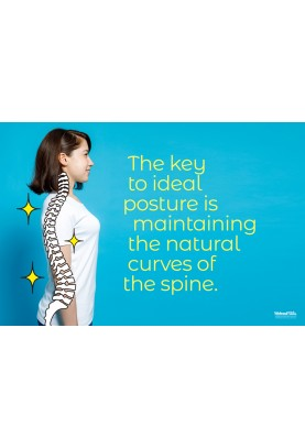 The Key to Ideal Posture Poster