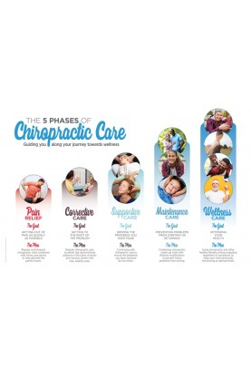The 5 Phases of Chiropractic Care Poster