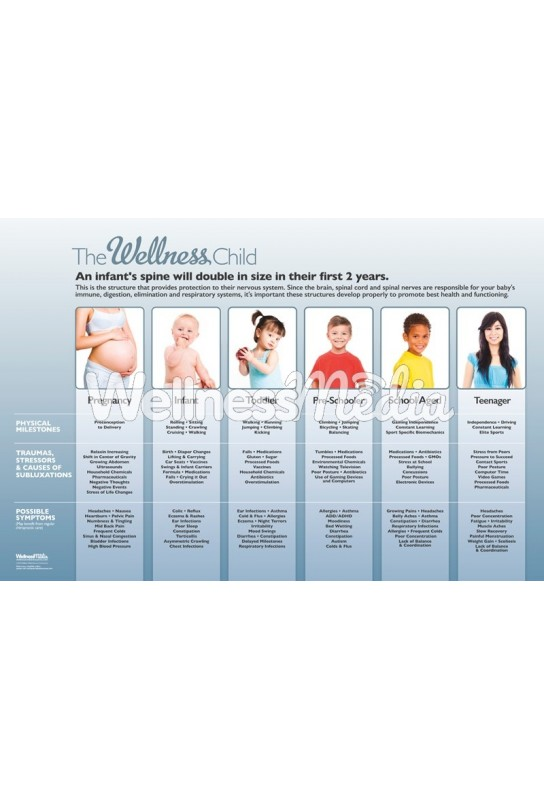 The Wellness Child - Stages of Development Poster
