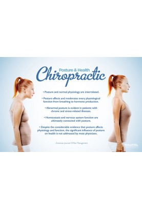 Posture and Health Chiropractic Poster